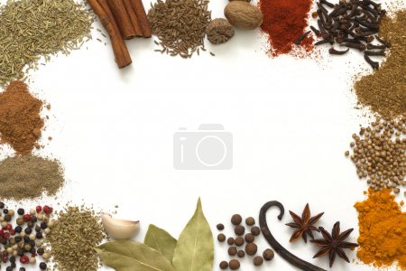 Herbs and spices border on white background