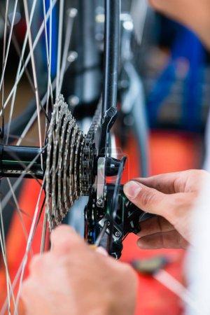 Bike mechanic working on gears