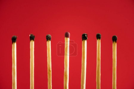 Unburned match among another isolated on red