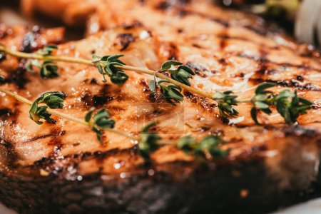Close-up view of grilled salmon fish with thyme