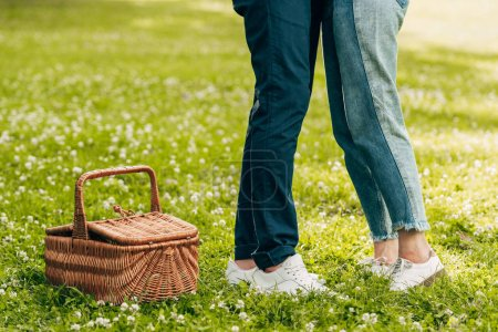 low section of young couple standing near picnic basket in park