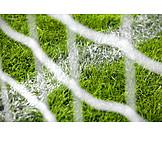 Line, Lawn, Net