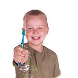 Child, Health, Dental Hygiene