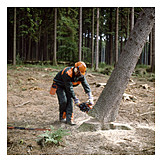 Forester, Tree felling