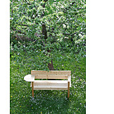 Garden, Bench