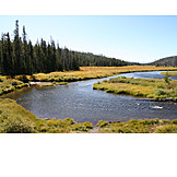 River, Yellowstone national park, Snake river