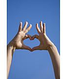 Heart, Hand, Cordate