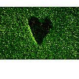 Heart, Heart shaped, Hedge, Cut out