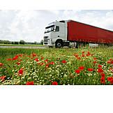 Truck, Road