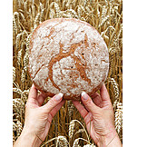 Agriculture, Bread, Loaf, Staple food
