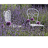 Garden chair, Lavender