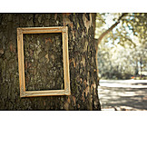 Tree trunk, Picture frame