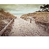 Coast, Baltic sea, Beach access
