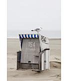 North sea, Beach chair, Seagull