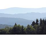 Hazy, Bavarian forest
