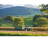 Agriculture, Harvest, Tractor, Harvest, Berchtesgadener land