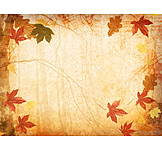 Backgrounds, Autumn, Autumn Leaves