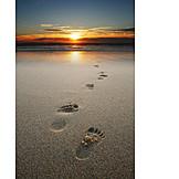 Holiday & Travel, Sunset, Beach Walking