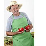 Agriculture, Vegetable, Harvest, Farmer