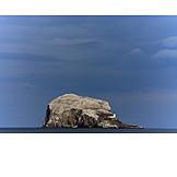 Scotland, Rock island, Bass rock