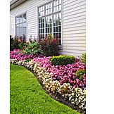 Garden, Front Garden, Flower Bed