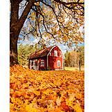 House, Autumn, House, Holiday Villa