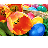Easter, Easter Egg, Easter Nest