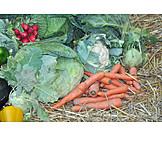 Vegetable, Harvest, Vegetable shop