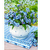 Forget, Me, Not, Bouquet, Flower vase