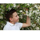 Boy, Spring, Apple Blossom