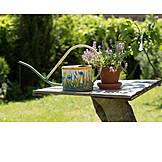 Garden, Watering Can