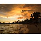 Holiday & Travel, Palm Beach, Sri Lanka