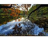 Lake, Autumn, Water Reflection