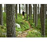 Path, Hiking