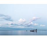 Sea, Seagull, Groyne
