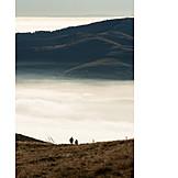 Fog, Morning, Storm, Cloud, Vosges