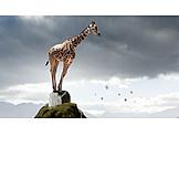 Dreams, Giraffe, Acrophobia