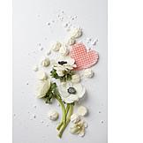 Valentine, Flowers, Wind rose