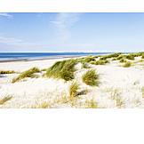Beach, North sea, Amrum
