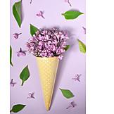 Bouquet, Spring