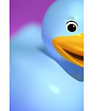 Rubber duck, Rubber duck, Rubber duck