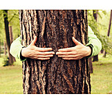 Embracing, Tree trunk, Nature