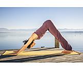 Yoga, Adho mukha svanasana, Downward dog
