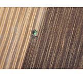 Field, Plowing, Lines
