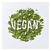Nutrition, Vegan