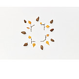 Frame, Autumn decoration