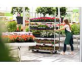 Employees, Inventory, Gardening